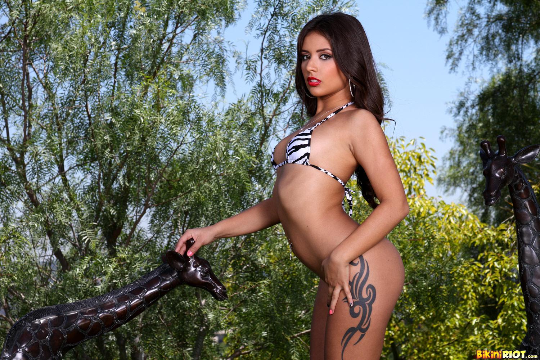 Bikini Riot - Zebra Print Bikini at AmateurIndex.com