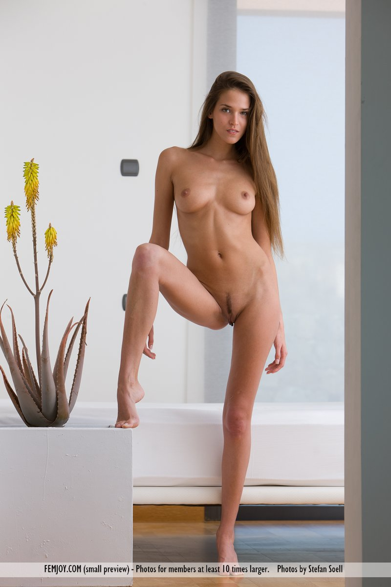 Long Haired Beautiful Nude Woman