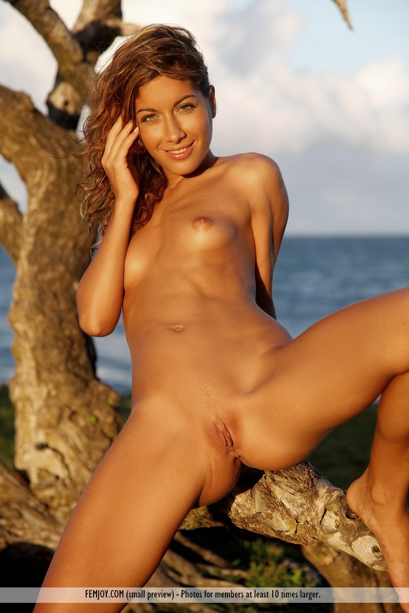 Congratulate, Vintage tropical island girls nude excellent and
